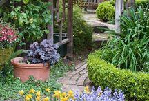 In the Garden / by Leslee Abram