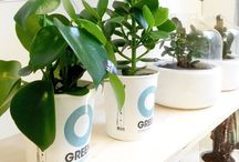 Ogreen @ Stores / Ogreen plants are sold in over 80 stores all over Europe. These are some of our favourites.