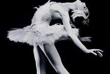 Dance / by Darlyne Henry
