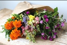 Non-Traditional Wedding Bouquet Ideas / Are you planning on carrying an earth-friendly bridal bouquet? Check out our gorgeous environmentally friendly bridal bouquet ideas! These non-traditional wedding bouquets use buttons, brooches, cotton and other natural non-floral materials.  / by Green Bride Guide