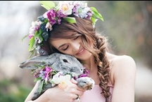 Wedding Pets! / Wedding ideas for your pets from other eco friendly weddings! / by Green Bride Guide