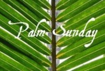 Holidays - Palm Sunday