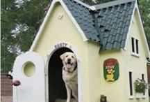 Dog houses, mansions, beds and retreats