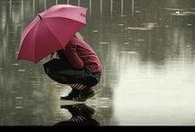 A Rainy Day / Genesis 7:12  And rain fell on the earth forty days and forty nights. / by Peggy Arteberry