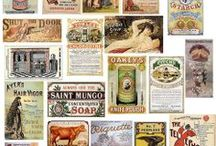 Vintage Labels / by Amy Webb