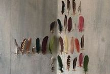 Display and collect / #taxidermy #feathers, #butterflies #birds #deer #cloche #glass #display #box #styling #eclectic / by Goed in Stijl
