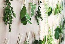 Weddings - Foliage