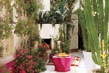 Garden Spaces / by Barbie // Fringe & Feathers