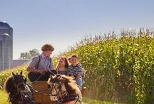 Amish in Lancaster County, PA / Part of Lancaster County's old-fashioned charm and homespun warmth stems from the Amish community. In many ways, Lancaster has become synonymous with Pennsylvania Amish Country. The families, farmers and craftsmen here follow a deeply religious, family-centered lifestyle that has maintained this tradition through a simple way of life that has not adopted the mainstream culture, yet has adapted in many necessary ways throughout the last 300 years.