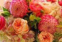 Flower Arrangements / Flowers / by Judy Timko