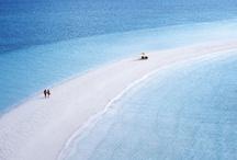 Life's a Beach!!!! / by Alia Polad