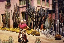 Exteriors / by Barbie // Fringe & Feathers