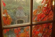Autumn / by Frances Poindexter