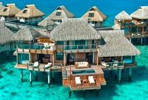 Travel & Restaurants / by Beachydreamn