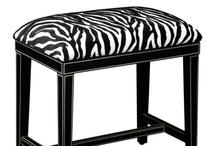 My Zebra Fix...