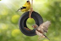 Birdhouses and Bird Feeders / all kinds of birdhouses