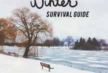 Surviving Winter