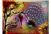 Peacock Design Gifts / by Michelle's World