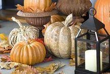 Seasonal - Autumn / Halloween / Thanksgiving / by Shauna Dunlap