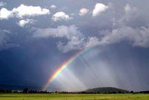 Rainbow Connection.. <3