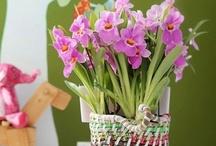 Plantes d'intérieur / #Aechméas, #vriéséas, #guzmanias et néorégélias et tant d'autres : avec leur allure #sculpturale, ces #végétaux #épiphytes s'allient parfaitement à votre décoration d'intérieur !