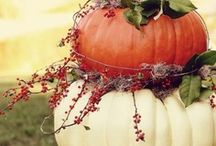 Fall decor / by Corrie Carbone