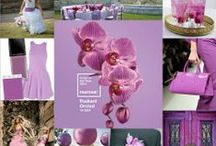 Radiant Orchid / Pantone's official color of the year 2014