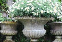 Flower Garden Ideas  / by Shelia Ikner