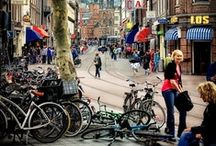 Urban biking / scenic or not, we need to get there..  / by Green Guru Gear