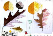 Daycare/nature,leaf,tree