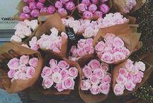 FLOWERS /// / Flower arrangement ideas.