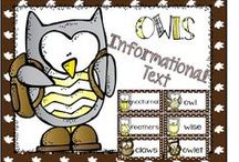 Owls / Have fun reading, writing, researching, and discovering new facts about owls.  There are crafts and literature suggestions.