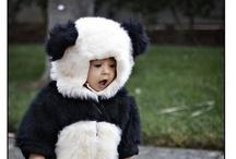 :::::: Panda ::::::