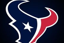 Real Women LOVE Sports / All Things Houston..Texans, Astros, Rockets / by Sandra C