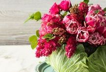 Spring Celebrations / Celebrate with family and friends! / by Woman Within