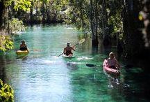 Florida / Florida Natural Springs and Anna Maria Island / by Moonbug Photography