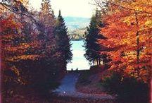 autumn. / by mary elizabeth tucker