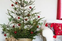 It's all about Christmas / Holiday Cheer ! / by Susan Herring