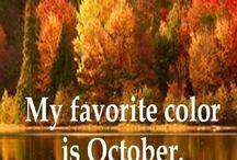 Fall is here / by Susan Herring