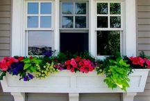 Outdoor Spaces / Inspiration and DIY projects collected to help make out exterior spaces as beautiful as the interior ones. / by Blair Stocker, wise craft