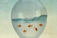ocean breeze / by Kelly Lafosse