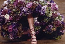 McQueen / by ✿ Christina ✿