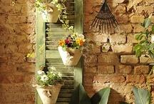Gardening / by Edilamar
