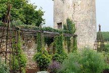 Potager ~ The Edible Garden