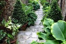 Pathways / A walkway or path to another destination. Usually in gardening spaces.