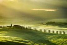GREEN IS / Grass lands / by Luis R Vargas