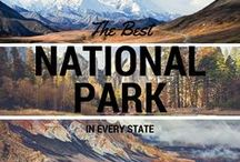 National Parks / If you are visiting a National Park, check out this board for trip reviews, hikes, and fun things to do in our National Parks.