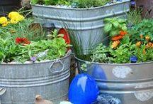 Galvanized Container Gardening / Gardening in galvanized containers