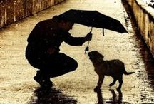 Gentle Rain / Teach me Father when I pray not to ask for more.  But rather let me give Thee thanks for what is at my door.  For food and drink, for gentle rain, for sunny skies above.  For happy home and family but most of all for love.