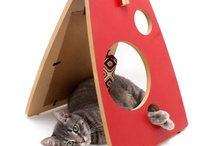 Products we love for cats / by PAWS of Coronado